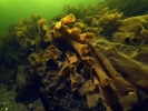 Под водой_109