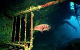 Под водой_117