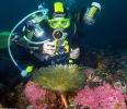 Под водой_123