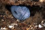 Под водой_168