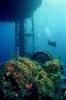 Под водой_186
