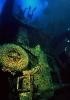 Под водой_189