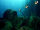 Под водой_191