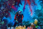 Под водой_195