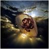 Под водой_30