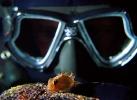 Под водой_45
