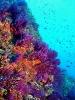 Под водой_47