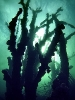 Под водой_56