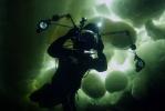 Под водой_66